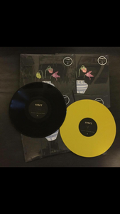 Image of 'The Part That No One Knows' Vinyl
