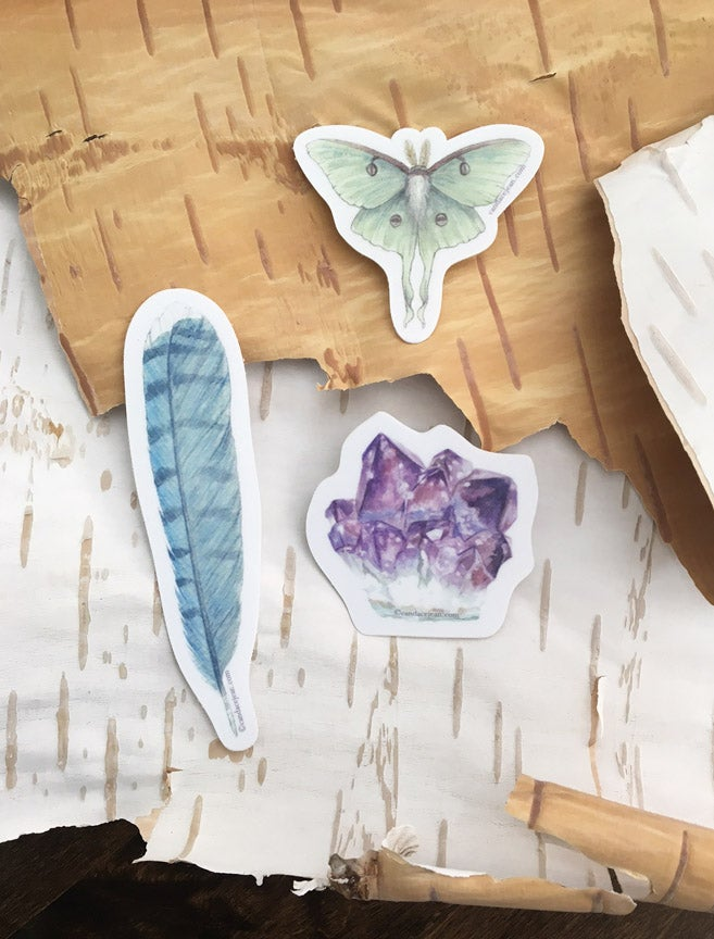 Image of Natural Curiosities Sticker Pack