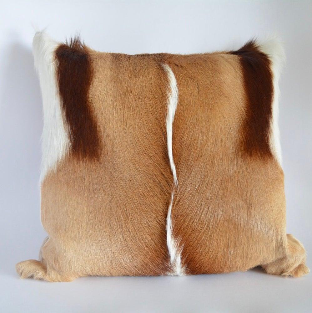 Image of Springbok Cushion