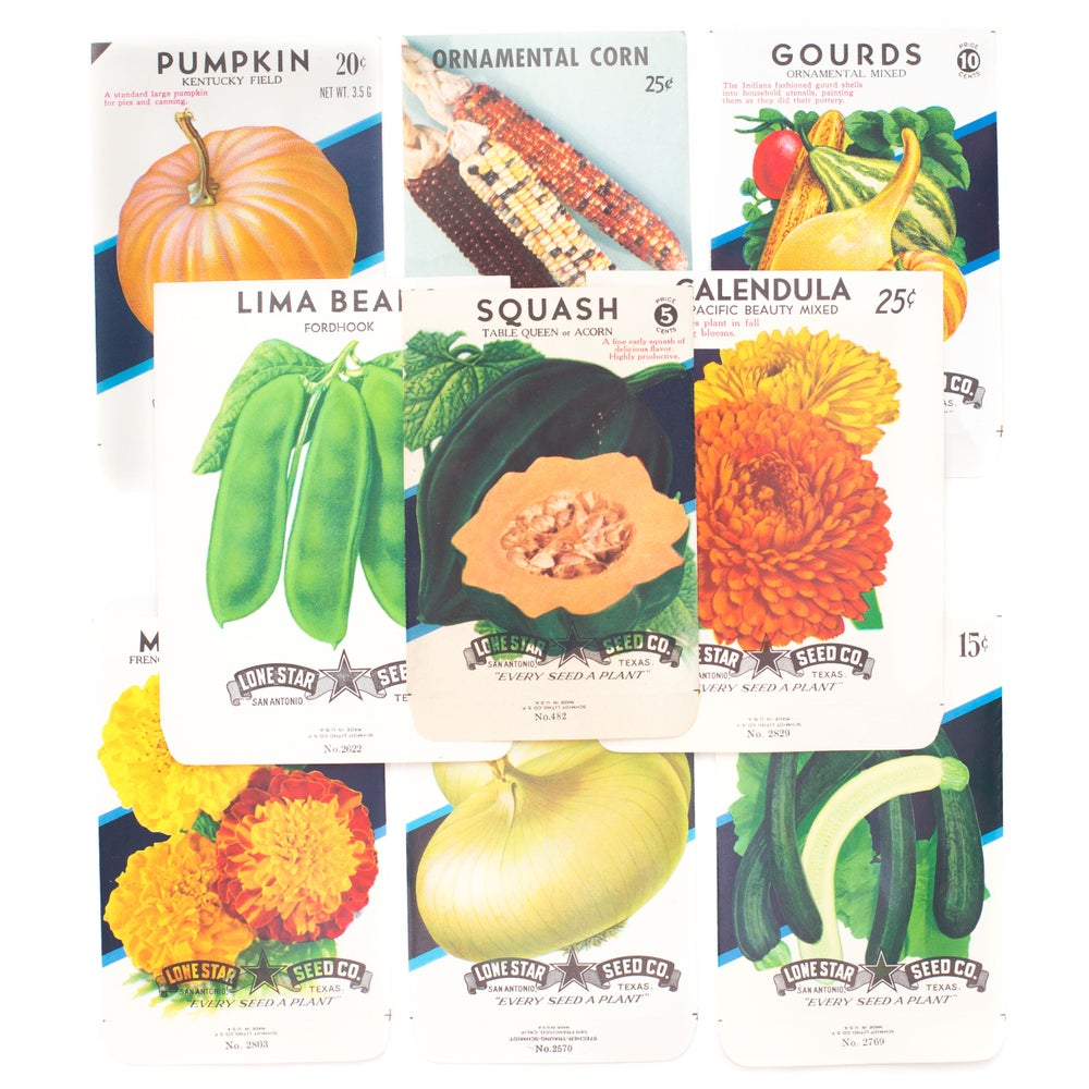 Image of Vintage Fall Seed Packets - Set of 9