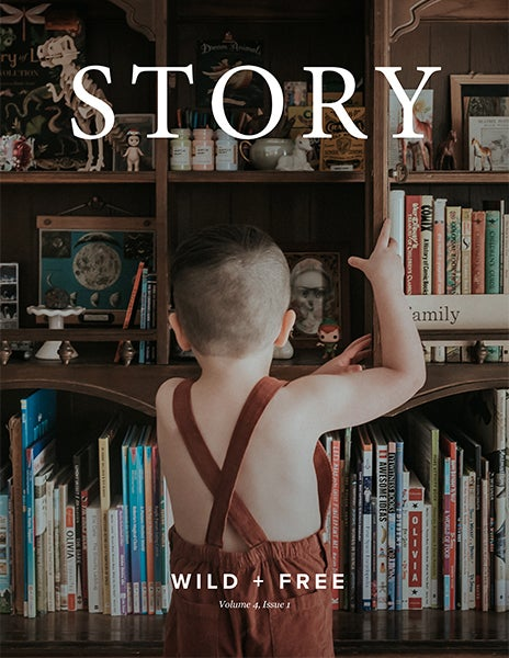 Image of STORY Content Bundle