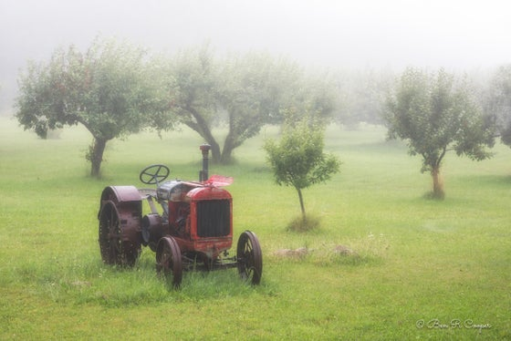 Image of Misty Morning in Bayfield