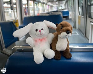 Image of Monorail Bunny and Ollie Otter