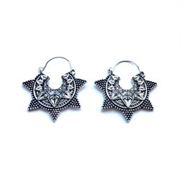 Image of Braavos earrings