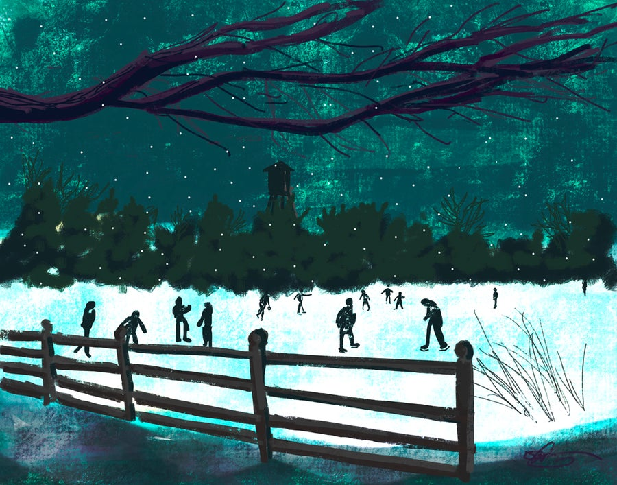 Image of SKATING ON CRANBURY LAKE
