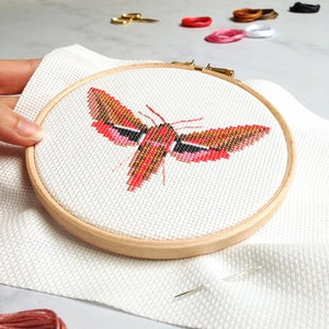 Image of Pink Moth cross-stitch kit