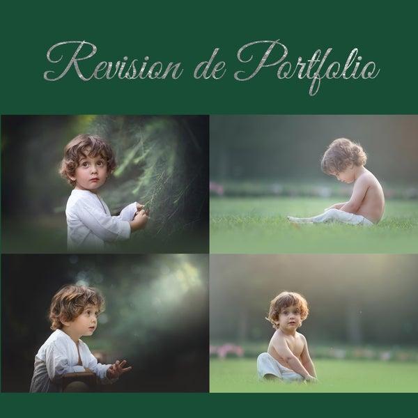 Image of REVISION DE PORTFOLIO / PORTFOLIO REVIEW