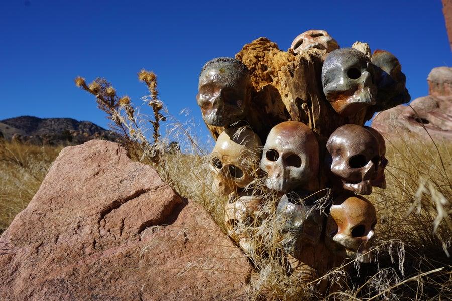 Image of Skull Planter