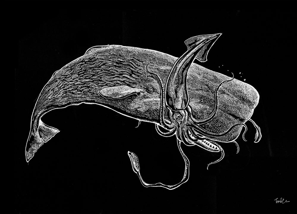 Image of SPECIAL SPERM WHALE SQUID BATTLE TSHIRT AND HOODIE PREORDER