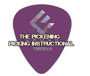 Image of Alternate Picking Instructional - The Pickening