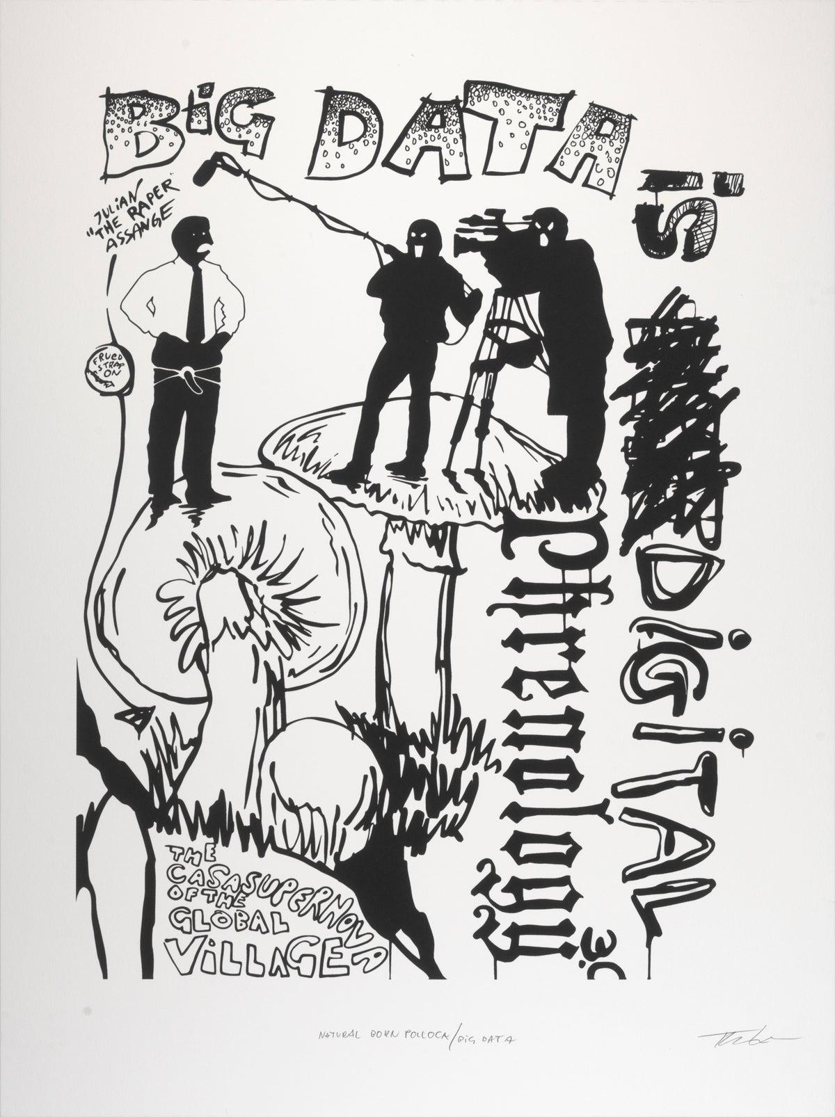Image of Natural Born Pollock / Big Data