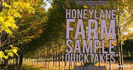 Image of Honey Lane Farm Sample Quick Takes