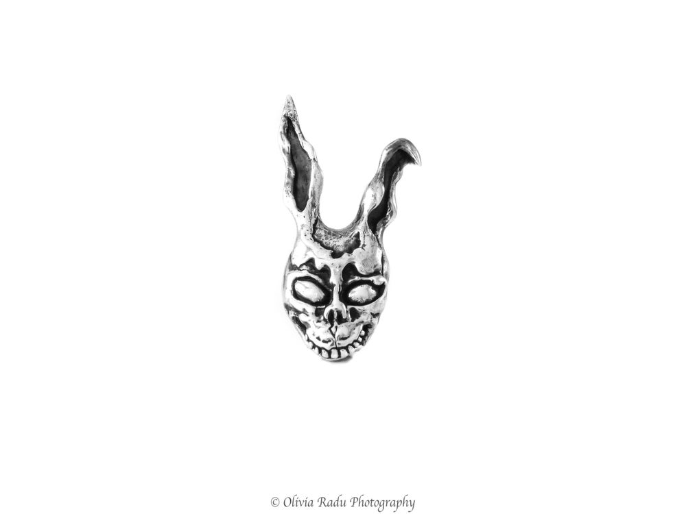 Image of Frank - the friendly rabbit
