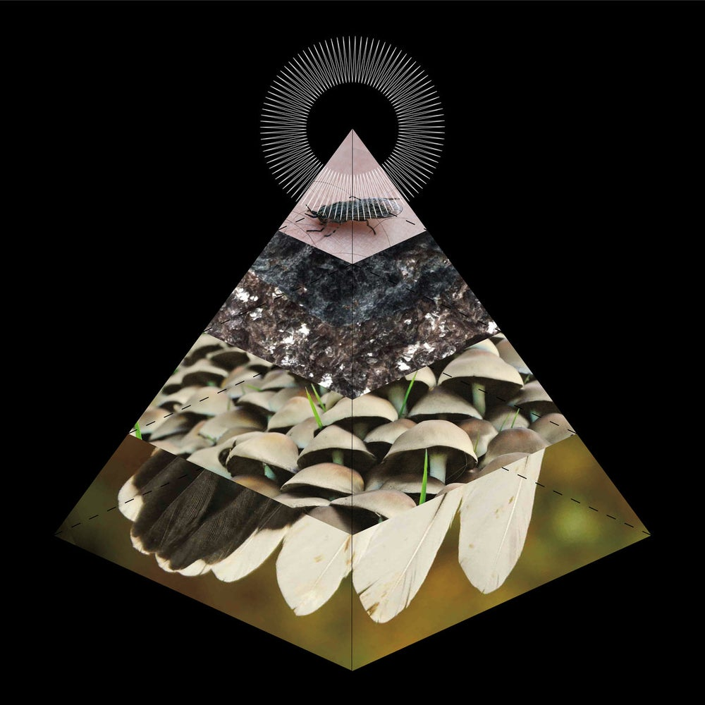 "Image of BELUS ""apophenia"" CD"