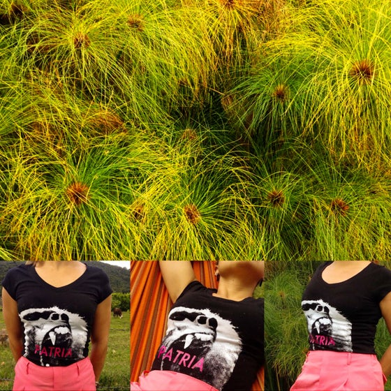 Image of PATRIA in pink Women T-Shirt by Carlos Saladen Vargas