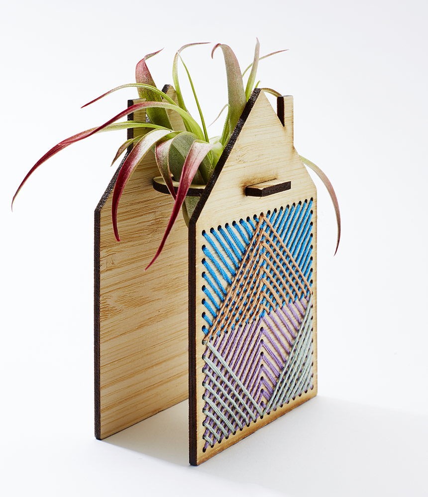 Image of Little House Airplant
