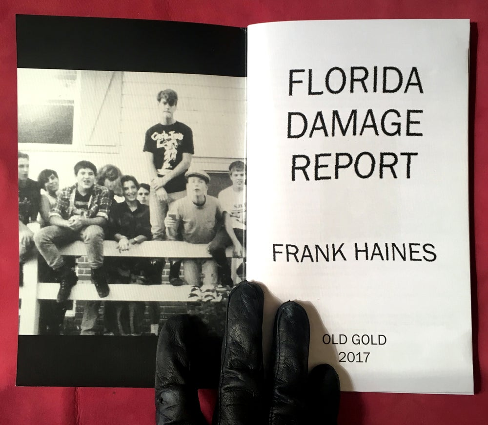 Image of Frank Haines - Florida Damage Report