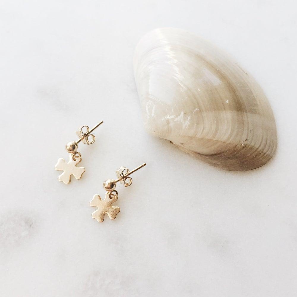 Image of Charm Earrings
