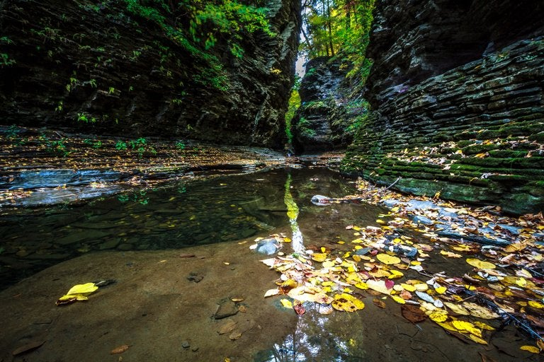 Image of Gorge Reflections