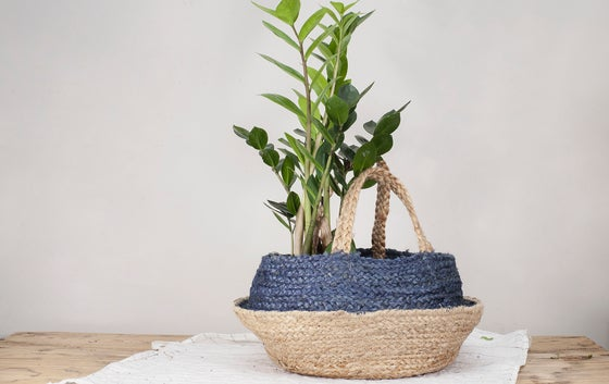 Image of Cesta Natural/Azul