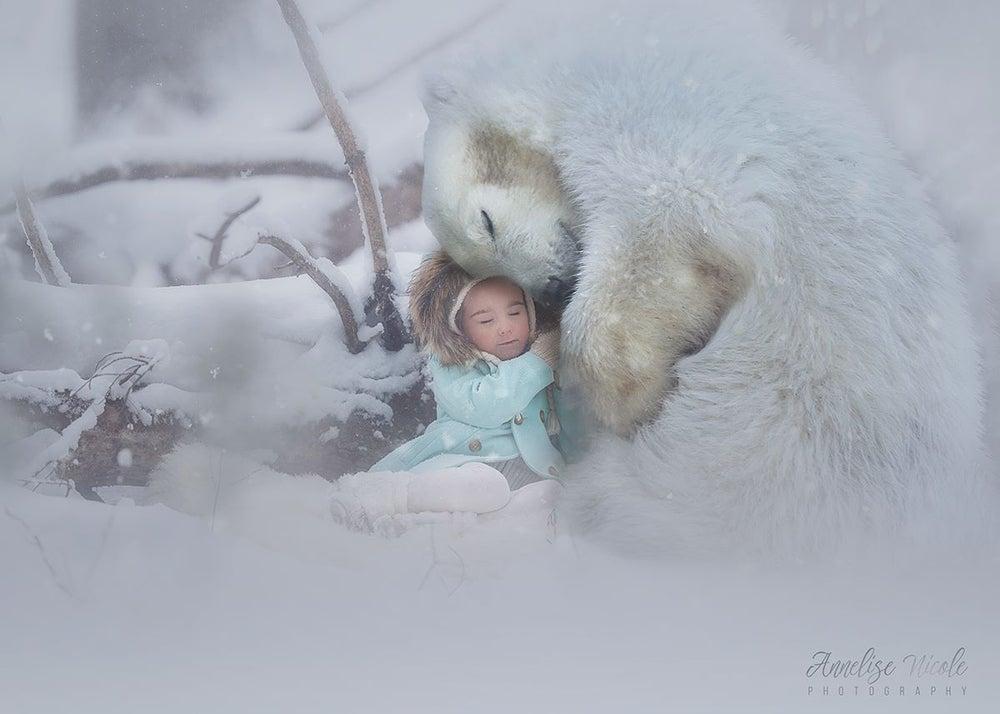 Image of Baby Polar Bears Overlays