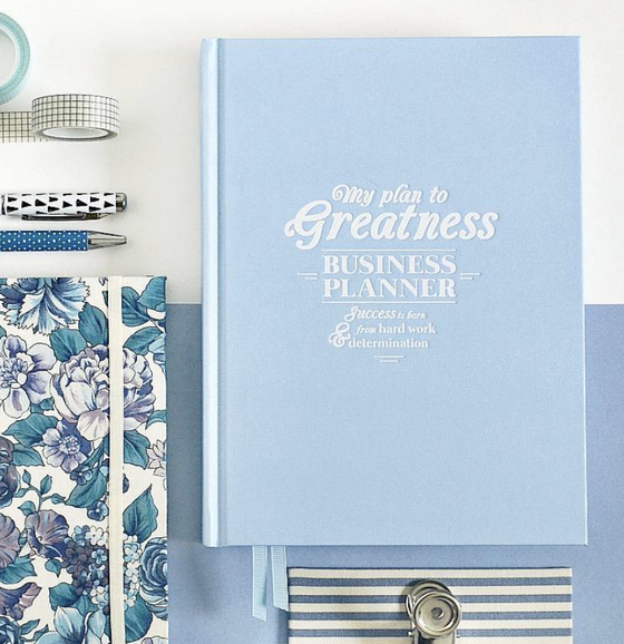 Image of My Plan to Greatness: Business Planner (BLUE)