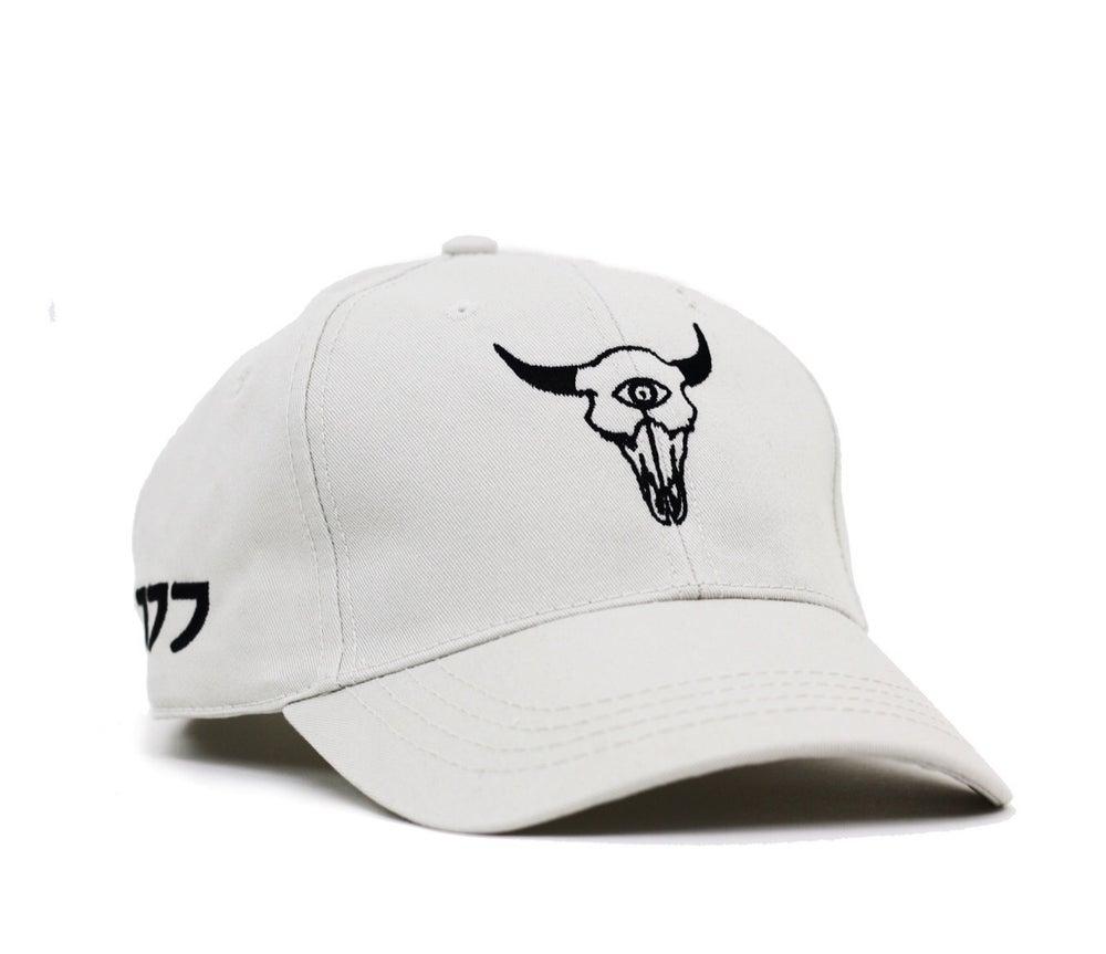 Image of OREGONTRAILBLAZER CAP