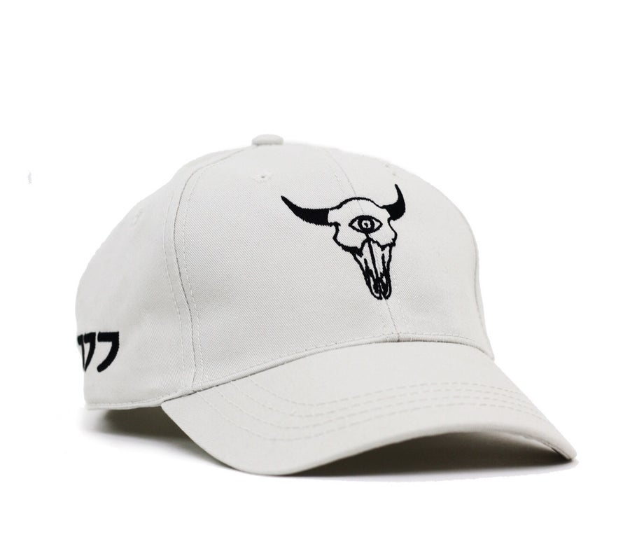 Image of OREGONTRAILBLAZER CAP