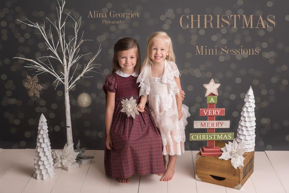 Image of Christmas Mini Sessions