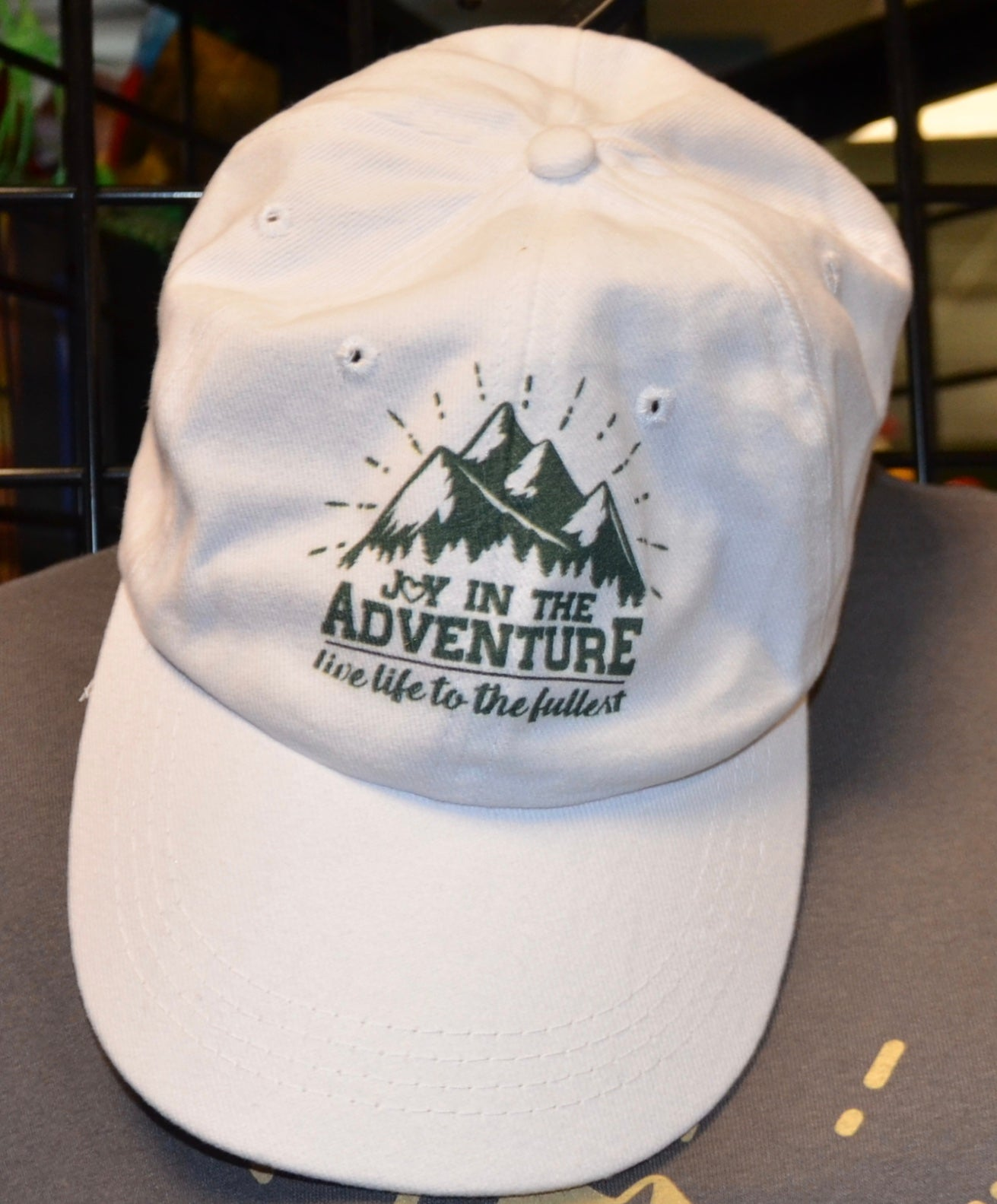 Image of Joy In The Adventure Ball Cap