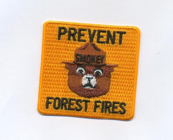 Image of Rare Smokey the Bear Prevent Forest Fires