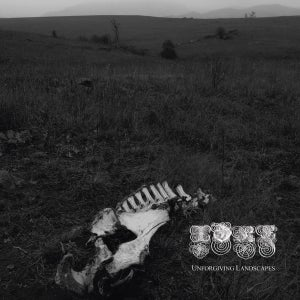"Image of IDRE ""unforgiving landscapes"" LP"