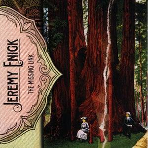 Image of Jeremy Enigk - The Missing Link CD