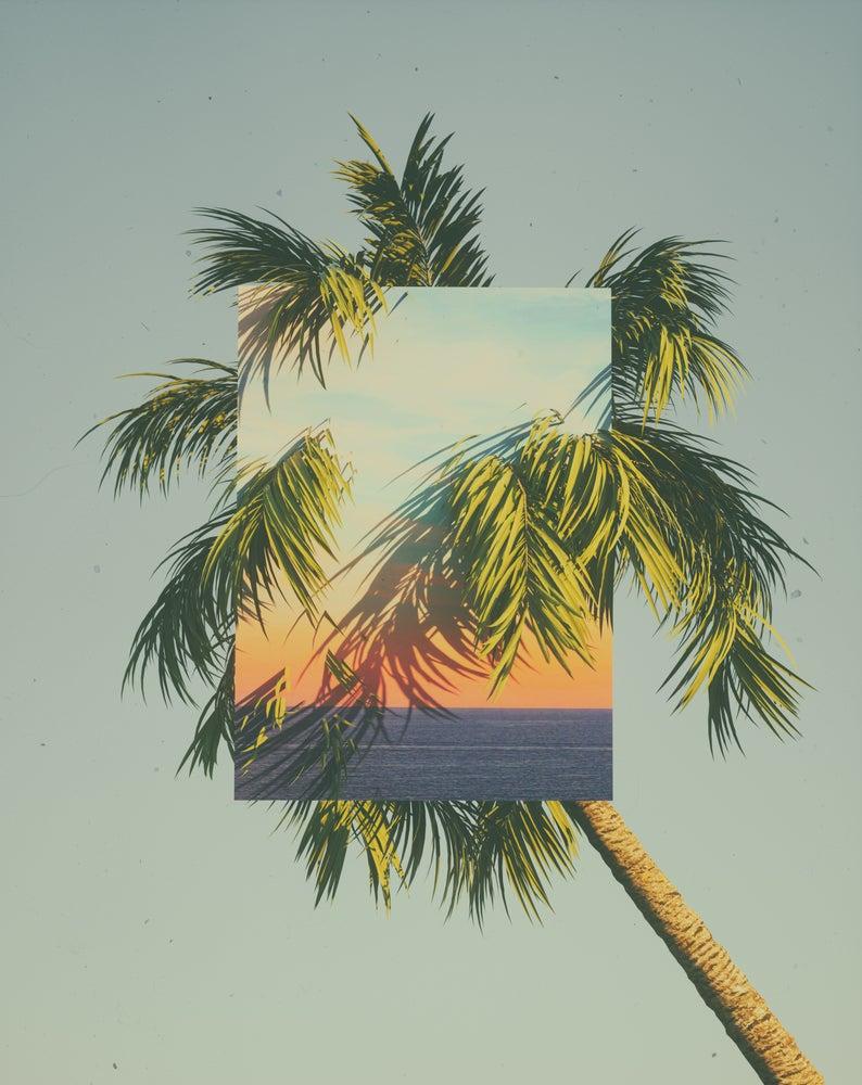 Image of Sunset Camouflage