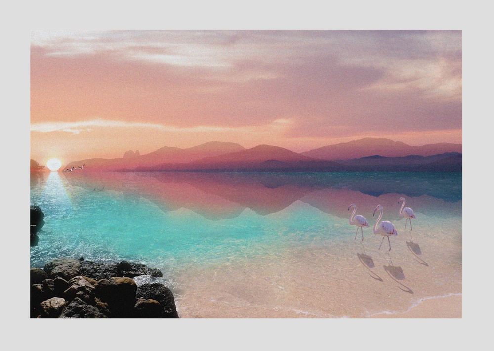 Image of Flamingo Paradise 75x50cm high quality photo print