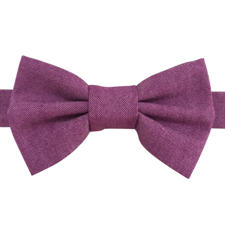 Image of sorbet chambray bow tie