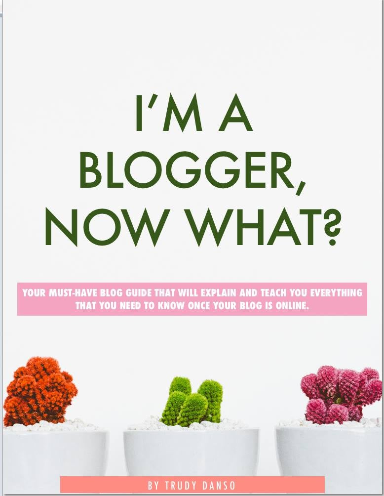 Image of I'M A BLOGGER, NOW WHAT?