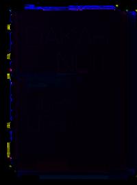 Image of DAKAR NUIT - Ulrich Lebeuf