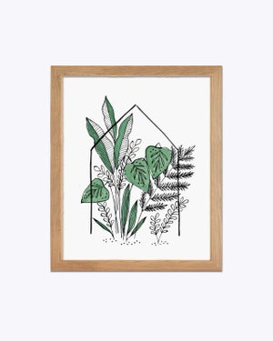 Image of House Plants - art print