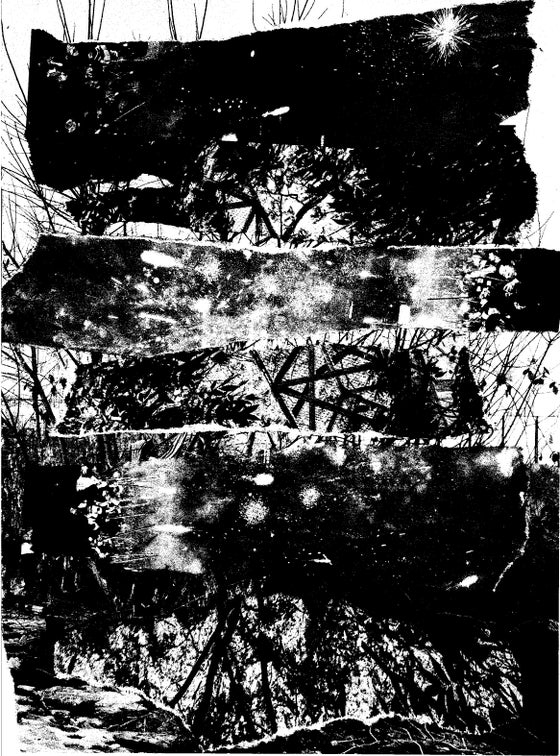 Image of Skin Graft - Towers Of Silence