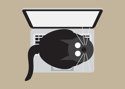 Image of Laptop Cats