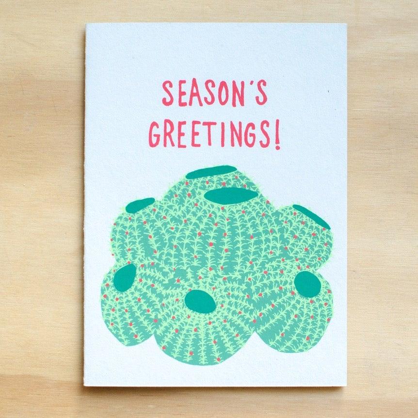 Image of Barrel Cactus Holiday