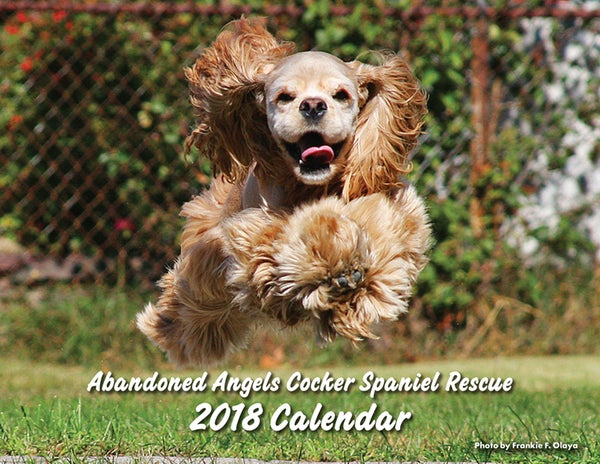 Image of 2018 Abandoned Angels Cocker Spaniel Rescue Calendar