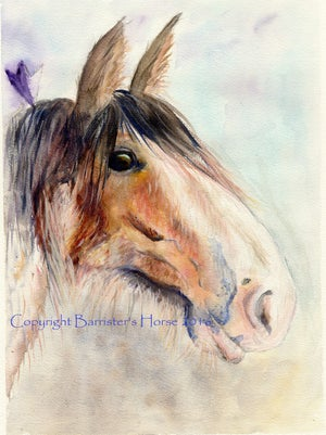 Image of CLYDESDALE HORSE, FINE ART PRINTS
