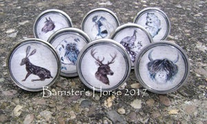 Image of WILDLIFE, METAL DRAWER KNOBS