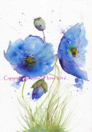 Image of BLUE POPPIES, FINE ART PRINTS