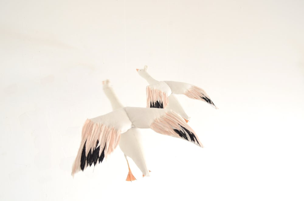 Image of cocon snow goose for Happy to see you