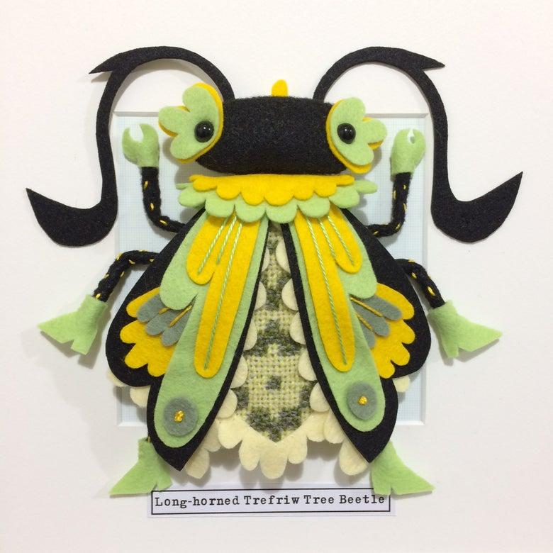 Image of Long-horned Trefriw Tree Beetle