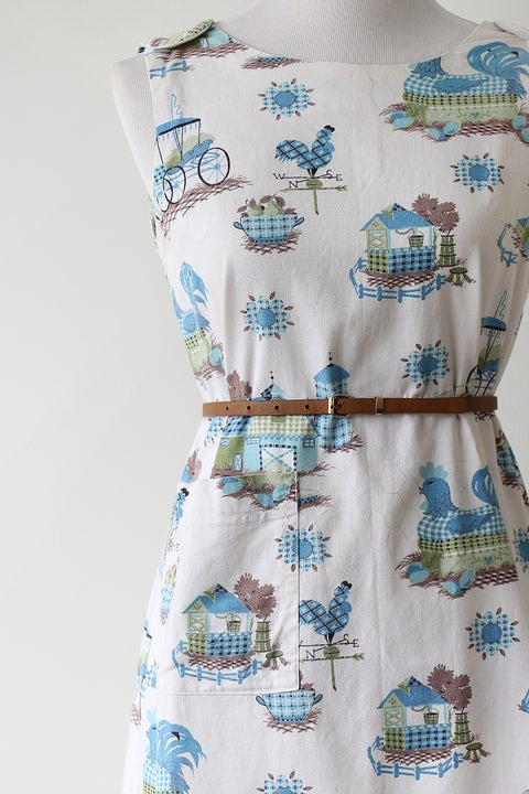 Image of SOLD Chicken Coop Farm Dress