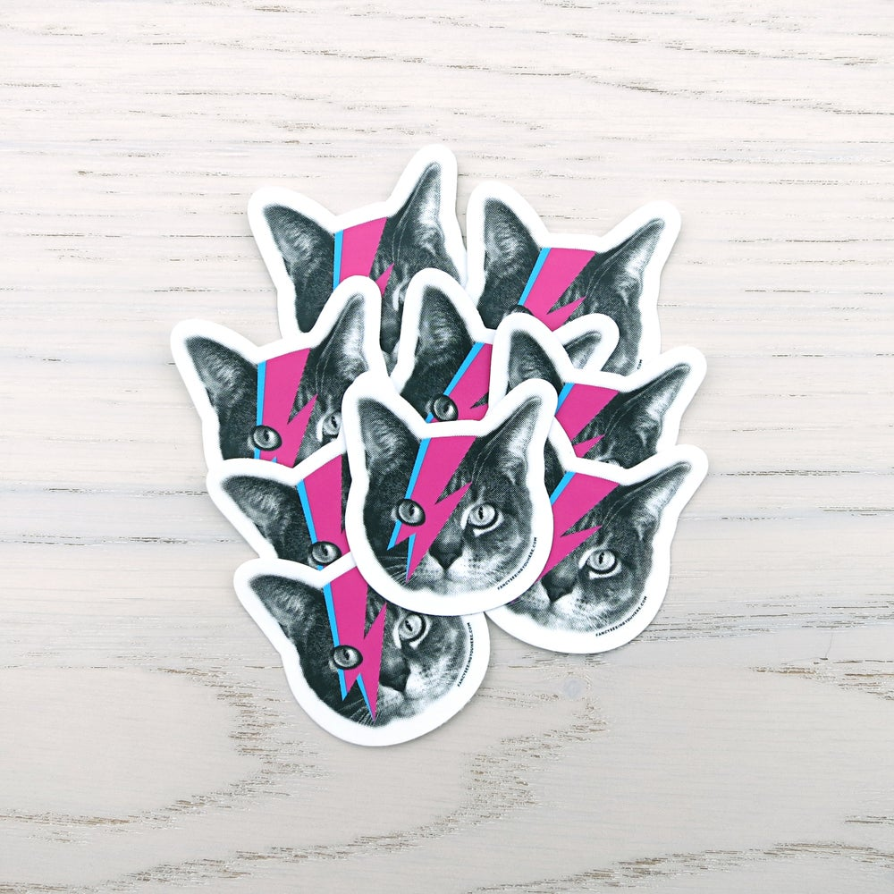 Image of bowie cat sticker